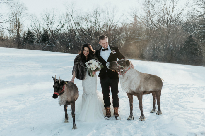 How do you love these wedding portraits with two North Pole deer