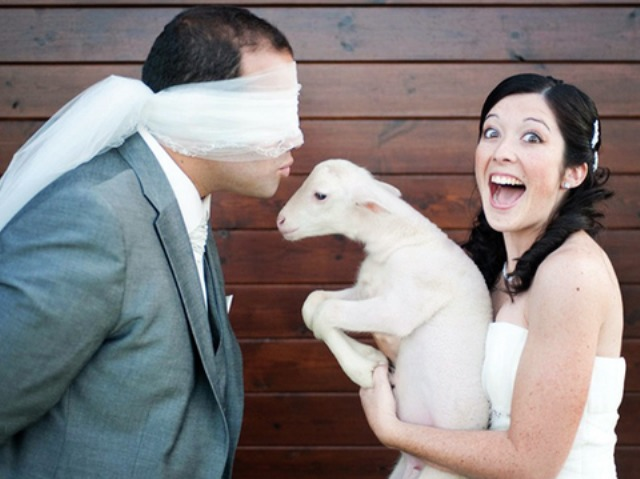 a blindfolded kiss at the wedding may be very surprising if you take a little pet instead of yourself