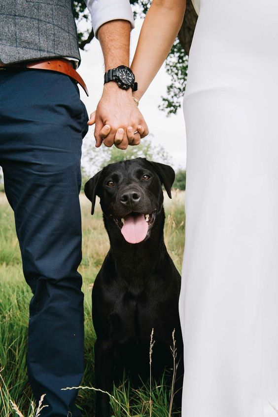 incorporate your pet into your wedding pics like that - holding hands and your dod sitting by your side