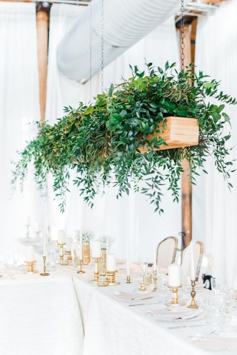 a hanging rectangular planter with much lush greenery cascading down to the reception space