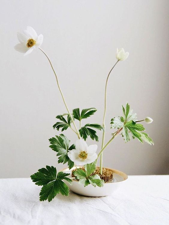 a minimalist floral arrangement - white blooms and greenery floating in a bowl are a cool decor idea