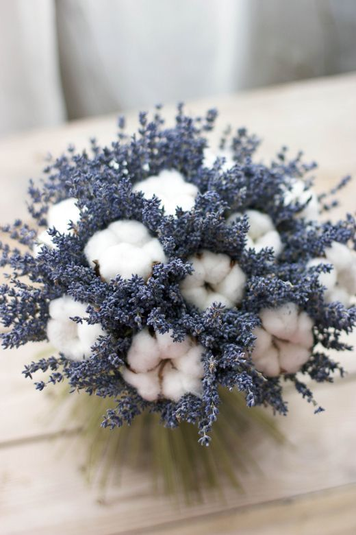 a catchy wedding centerpiece or bouquet of lavender and cotton is a cute and unusual arrangement