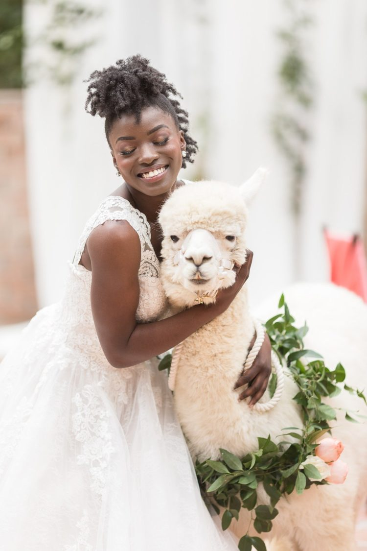 Adorable Animal-Loving Wedding Shoot With Llamas