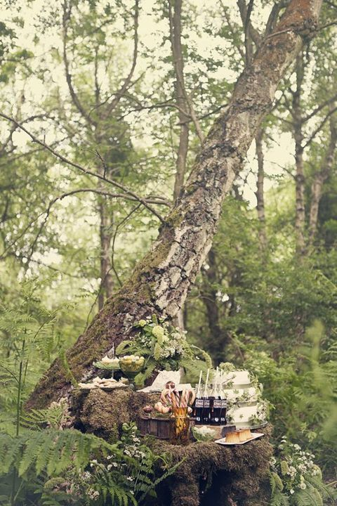display desserts and drinks on an old stump with moss and greenery next to another tree - it's so natural and cool for a woodland wedding