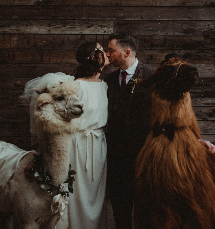 Vintage Wedding With A Scandinavian Feast And A Couple Of Llamas