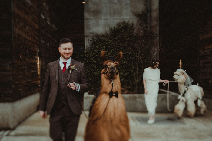 The groom was wearing a brown tweed three-piece suit, a white shirt and a red tie