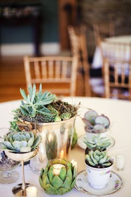 a cute wedding centerpiece with a metal bucket with succulents and teacups with them