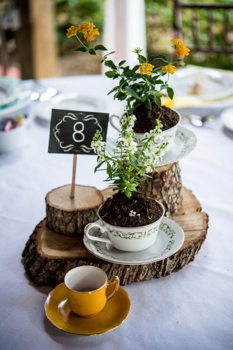 a rustic wedding centerpiece with wood slices, teacups with planted blooms, a table number