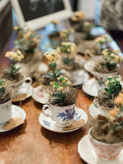 beautiful miniature teacups with potted plants and blooms plus cards as wedding favors and escort cards