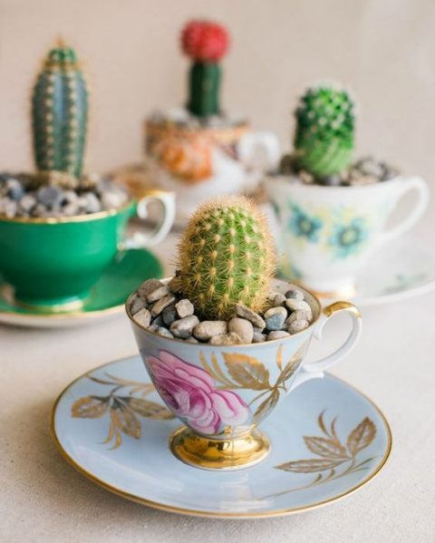vintage teacups with cacti and pebbles on top are chic and cute wedding favors, cool for a desert wedding