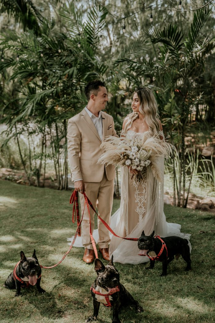 The couple's Frenchies took part in the wedding, too