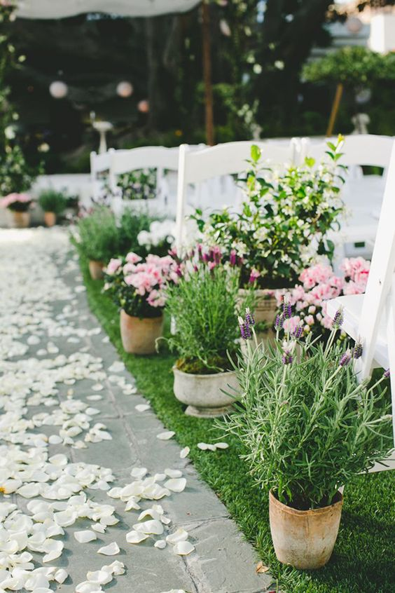 decorate your wedding aisle with large potted flowers and greenery to make the space cool and bright