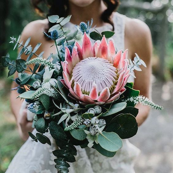 a gorgeous bouquet with a king protea, eucalyptus, blue thistles and some pale herbs for a tropical bride