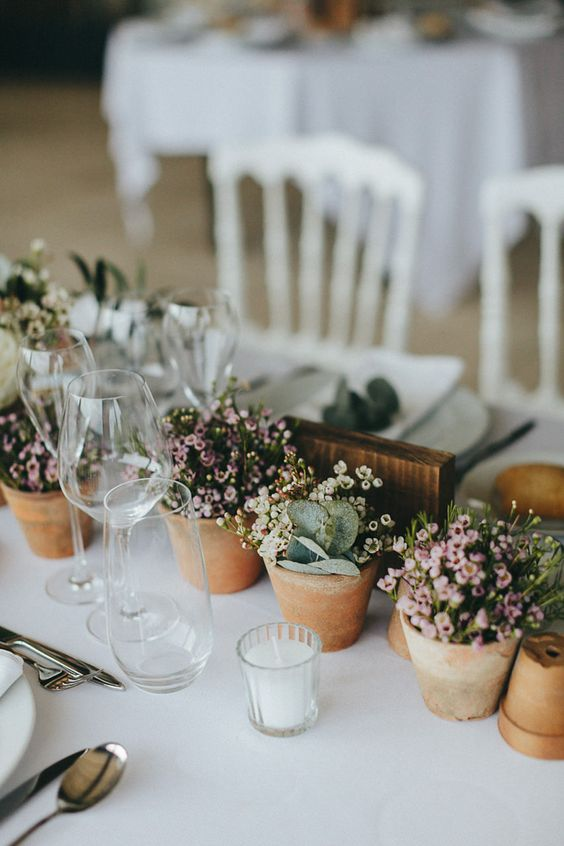 a wedding table runner composed of potted blooms and greenery is a cool sustainable idea to rock