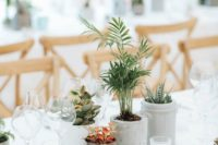 16 potted plants and succulents make up a simple and cool wedding centerpiece, which is sustainable