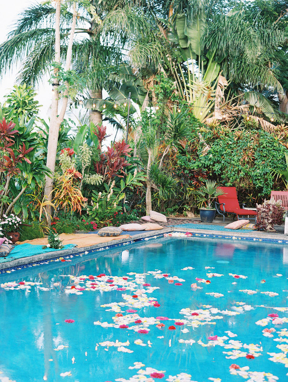 A swimming pool filled with floating blooms and petals added to the tropical ambience