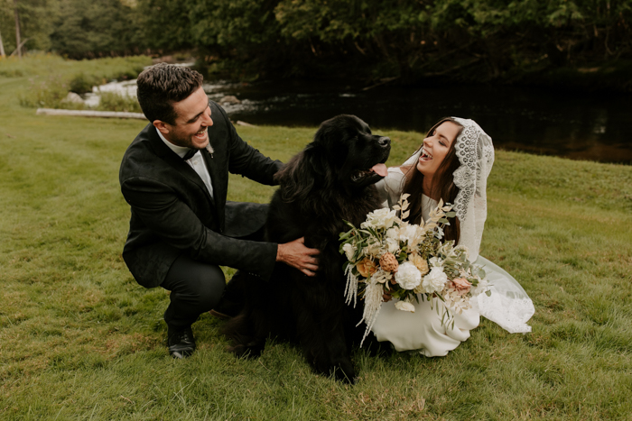 your pets can be your witnesses, they will be happy to be included into your wedding