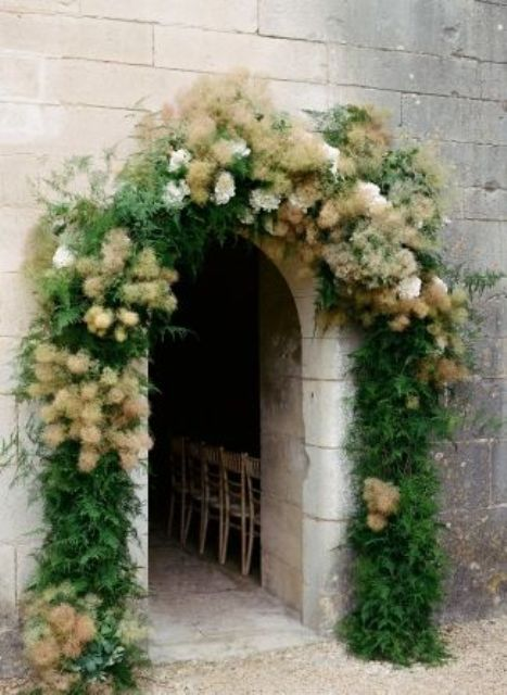 a doorway softened and decorated with greenery and smoke bush looks very cool and very trendy