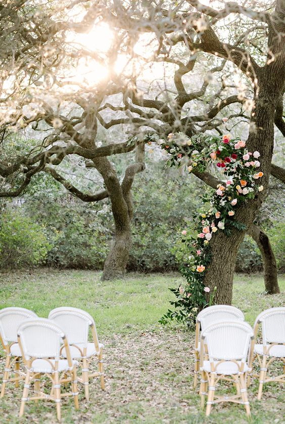 a backyard wedding altar of a living tree decorated with greenery, blush and red blooms climbing up it and some simple chairs