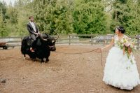 06 The couple were riding yaks that are symbolic for Chinese culture