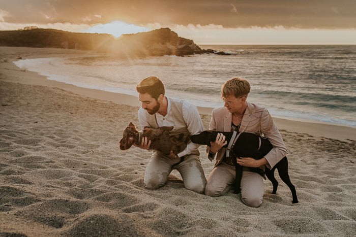 The couple's dogs participated in the wedding, too