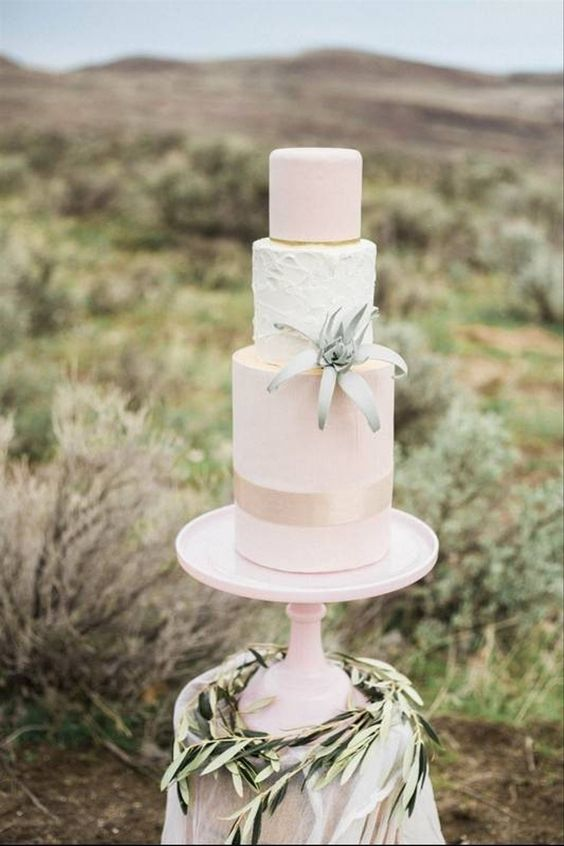 a refined blush and white three-tier wedding cake with a gold stripe and texture, with an air plant is a chic idea