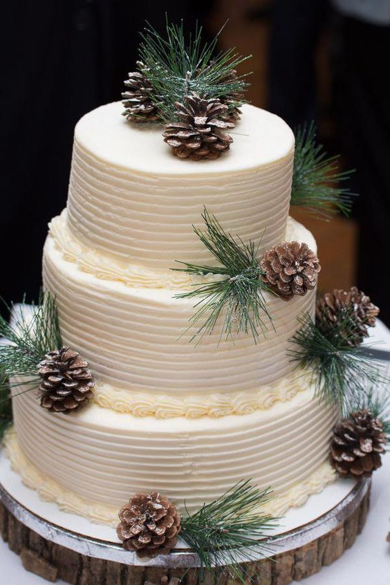 a winter three-tier wedding cake with fir twigs and pinecones is a lovely idea for a rustic wedding