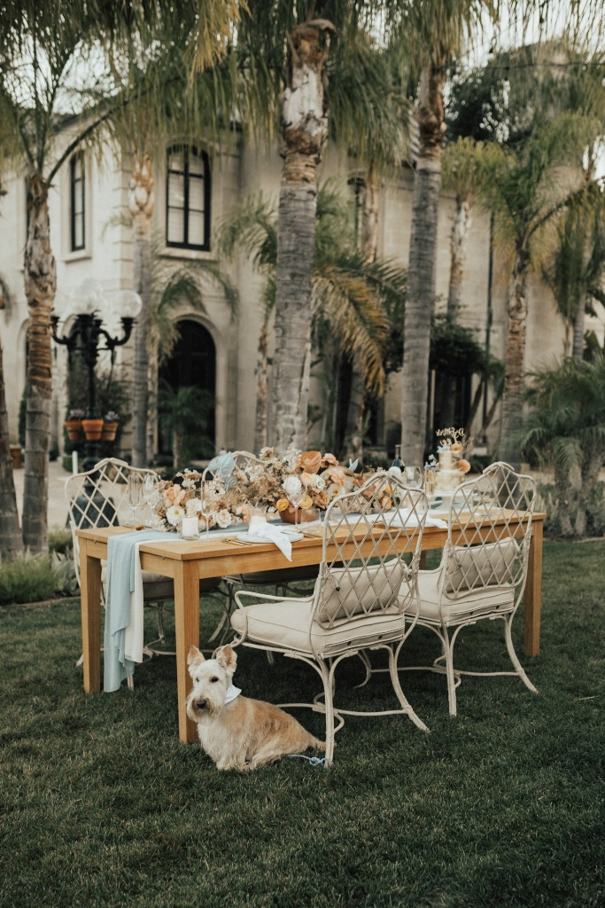 04 The wedding reception was done with refined chairs, lush florals and blue and white linens