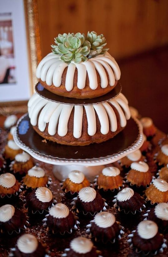 a two-tier bundt wedding cake with frosting and succulents on top is a pretty and simple idea to rock