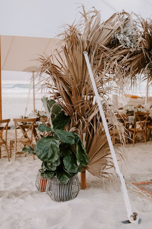 a cool wedding arch of dried fronds surrounded with potted greenery is a lovely idea for a boho tropical or beach wedding