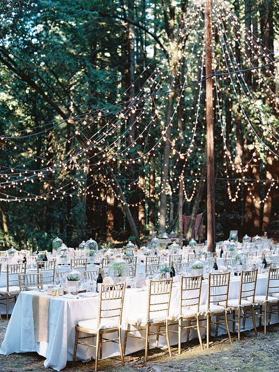 a refined and beautiful outdoor wedding reception with a light canopy over it that highlights it and makes it bolder