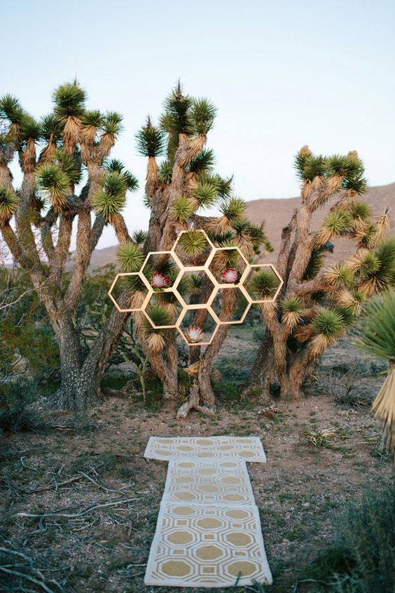 a desert mid-century modern wedding backdrop of living trees, honeycombs and king proteas and a pretty geo rug is a cool idea