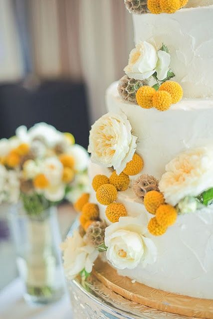 a white buttercream wedding cake with neutral peonies, seed pods and billy balls is a lovely and chic idea for a rustic wedding in spring or summer