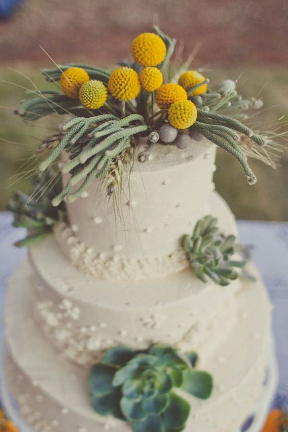 a white textural wedding cake with succulents, greenery on top and billy balls is amazing for spring or summer