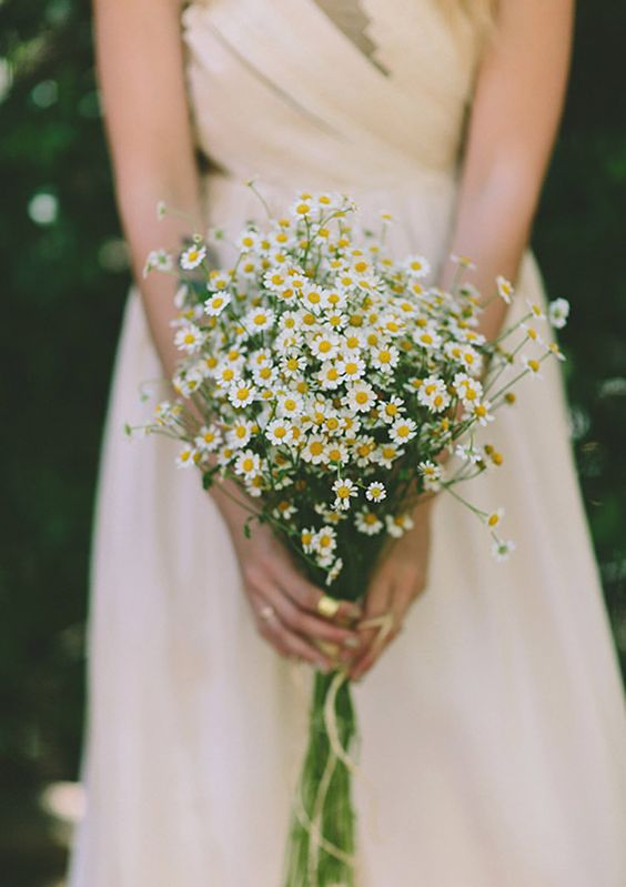 a simple and cool daisy wedding bouquet is perfect for a relaxed and fun summer wedding, it can beeasily composed by you yourself