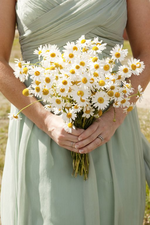 a pretty chamomile wedding bouquet is a fantastic idea for a wildflower, rustic or boho bride is amazing