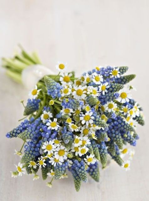 a lovely wedding bouquet of hyacinths and daisies is a cool idea for a spring wedding, for a rustic, boho or woodland