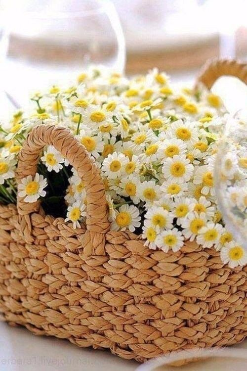 a basket with daisies is a very simple and super cute wedding centerpiece that you may arrange yourself for a summer wedding