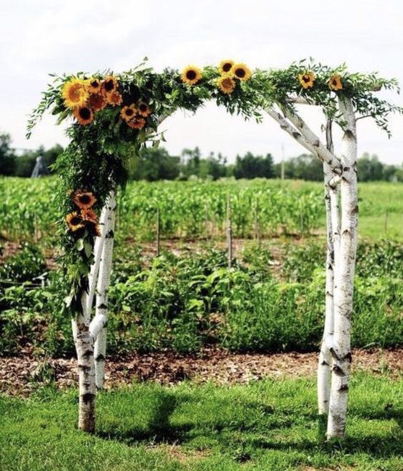 a summer rustic wedding arch of birch branches, greenery and sunflowers is a fun and bold idea to rock and you can DIY it