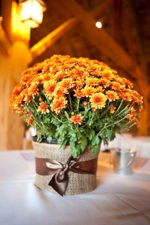a bright fall wedding centerpiece of bold blooms wrapped with burlap and a brown ribbon is a cool idea for a colorful rustic fall wedding