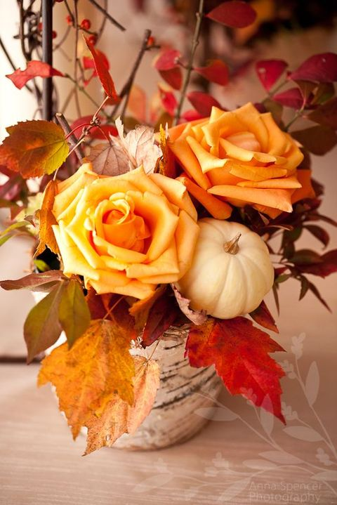 a rustic fall wedding centerpiece of a birch stump, orange roses, a pumpkin and bold fall leaves is a lovely and cozy idea