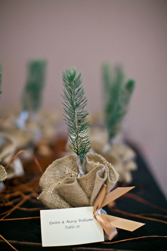 little evergreens in burlap with tags are amazing eco-friendly wedding favors for winter or Christmas weddings