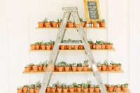 25 potted plants are perfect eco-friendly and zero waste wedding favors are lovely for everyone and will remind of your wedding