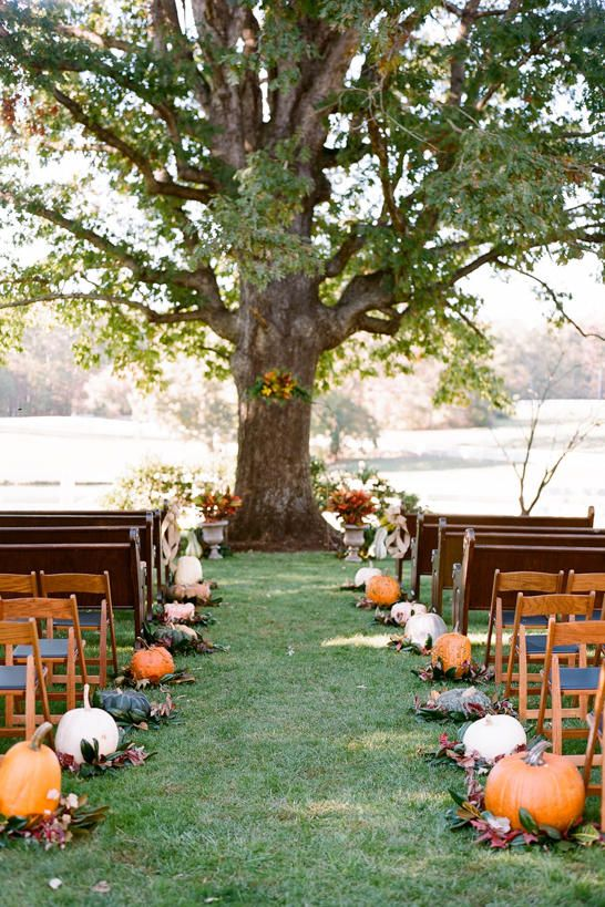 a simple and cozy rustic fall wedding ceremony space with pumpkins and fall leaves lining up the aisle and more leaves on the living tree