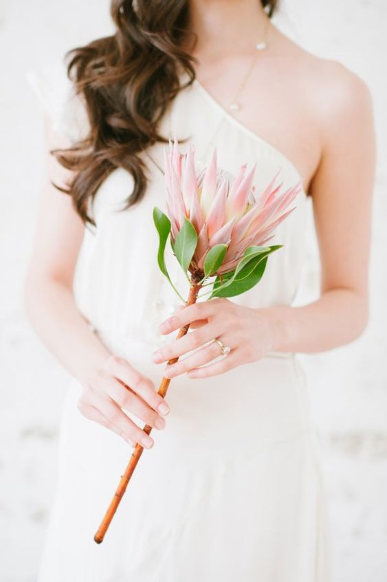 a single stem wedding bouquet of a pink king protea is a lovely idea for a modern or minimalist bride, it's an easy solution