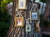 a real tree with a whole gallery wall of family pics hanging on it is a stylish rustic idea