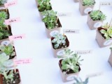 wedding favors – succulents in tiny pots with marks are a trendy and budget-friendly idea for a wedding