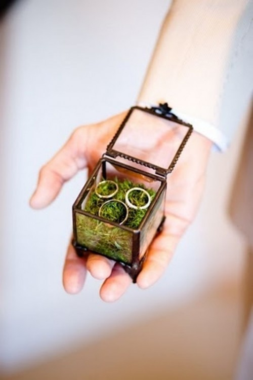a framed glass box filled with moss is a pretty idea for a garden or woodland wedding