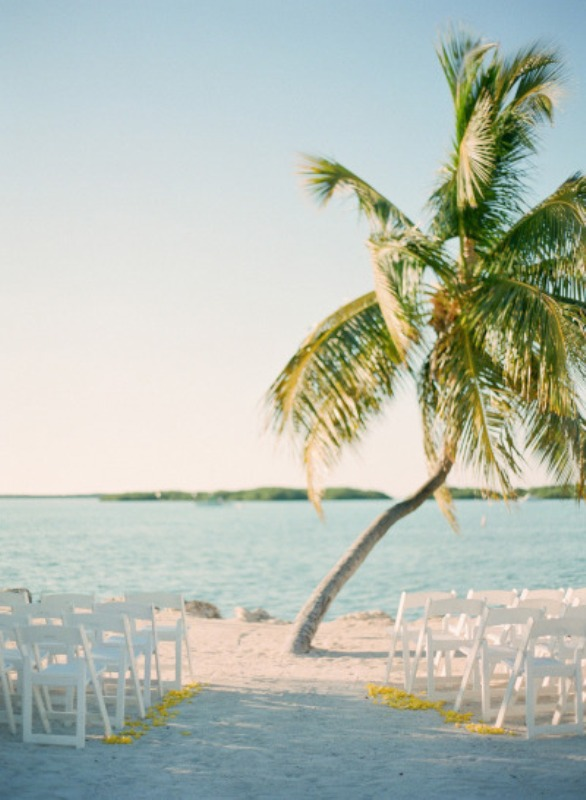 a simple and romantic beach wedding space with a palm tree and white chairs and petals on the sand is lovely