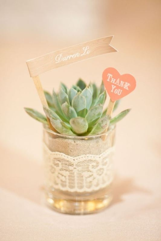 little succulents in tiny pots with lace, toppers is a trendy idea for a modern wedding rehearsal dinner